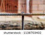 durable professional welded... | Shutterstock . vector #1138703402