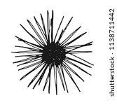 sea urchin vintage sketch.... | Shutterstock .eps vector #1138711442