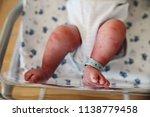 feet of a newborn baby | Shutterstock . vector #1138779458
