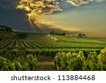 sunset over the vineyards of...