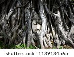 the head of a stone buddha... | Shutterstock . vector #1139134565