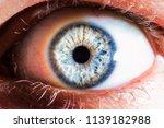 blue eye macro | Shutterstock . vector #1139182988