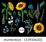 Sunflowersand Wild Flowers ...