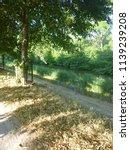 dutch path   lane bolsward ... | Shutterstock . vector #1139239208