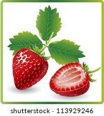 beautiful strawberries isolated ... | Shutterstock .eps vector #113929246