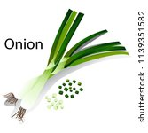 illustration of two green onion ... | Shutterstock .eps vector #1139351582
