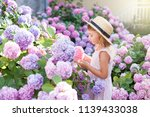 little girl in bushes of... | Shutterstock . vector #1139433038