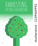 apple banner. harvesting | Shutterstock .eps vector #1139469992