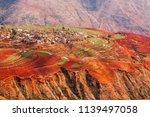 fantastic landscape  colorful... | Shutterstock . vector #1139497058