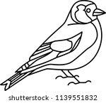 goldfinch  british birds  | Shutterstock .eps vector #1139551832
