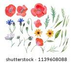 watercolor hand painted wild... | Shutterstock . vector #1139608088