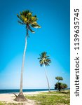 amazing tropical beach... | Shutterstock . vector #1139635745