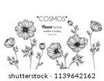 cosmos flower frame drawing... | Shutterstock .eps vector #1139642162