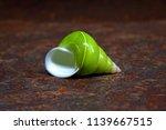 emerald green snail or green... | Shutterstock . vector #1139667515