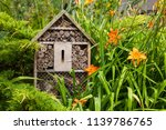 Insect house   hotel in a...