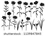 set of silhouettes of flowers... | Shutterstock .eps vector #1139847845
