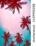coconut palm trees   tropical... | Shutterstock . vector #1139900288