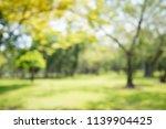 abstract blur city park bokeh... | Shutterstock . vector #1139904425