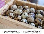 fresh quail eggs in a rustic... | Shutterstock . vector #1139960456
