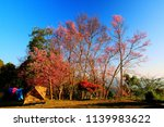 tourist living in tent to see... | Shutterstock . vector #1139983622
