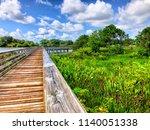 Raised Wooden Boardwalk In The...