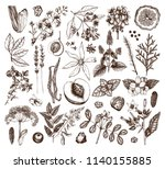 vector collection of hand drawn ... | Shutterstock .eps vector #1140155885
