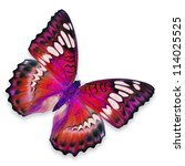 Stock photo red butterfly flying 114025525