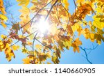 maple leaves natural autumn... | Shutterstock . vector #1140660905