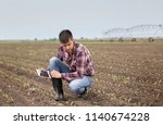 handsome farmer with tablet and ... | Shutterstock . vector #1140674228