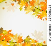 maple autumn background  vector ... | Shutterstock .eps vector #114086116