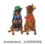 two miniature pinscher dogs... | Shutterstock . vector #1140900308