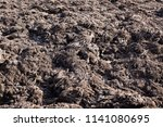 palm of biogas plant | Shutterstock . vector #1141080695