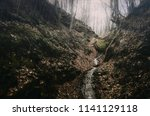 forest stream during autumn... | Shutterstock . vector #1141129118