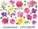 large set of beautiful flowers  ... | Shutterstock . vector #1141168298