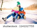 a young mother with a baby... | Shutterstock . vector #1141317755