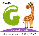 Stock vector green letter g and brown giraffe english alphabet with animals cartoon characters isolated on 1141343972