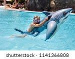 happy little kid boy jumping in ... | Shutterstock . vector #1141366808