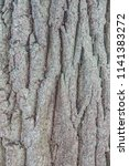 old oak texture. wrinkled face. ...   Shutterstock . vector #1141383272
