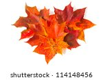 autumn maple leaves over white forming heart shape - stock photo