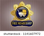 shiny emblem with baby cart... | Shutterstock .eps vector #1141607972