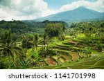 rice terraces. tegalalang  bali ... | Shutterstock . vector #1141701998