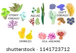 set of different species of... | Shutterstock .eps vector #1141723712