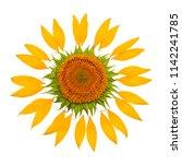 creative idea of the sun from a ... | Shutterstock . vector #1142241785