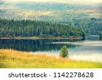 panoramic view of fjord.... | Shutterstock . vector #1142278628