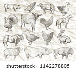 collection of farm animals on a ... | Shutterstock .eps vector #1142278805