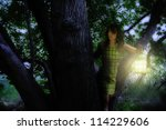 a girl with a lantern in a tree - stock photo