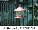 vintage lantern style bird... | Shutterstock . vector #1142408288