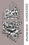 the drawn flowers on the... | Shutterstock . vector #1142415332