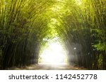 a tunnel of bamboo forest with... | Shutterstock . vector #1142452778