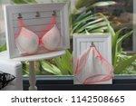 ladies lingerie readymade...   Shutterstock . vector #1142508665